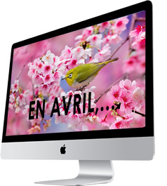 image avril
